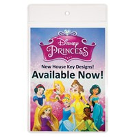 POS36 | DISNEY PRINCESS MERCHANDISER WALLET